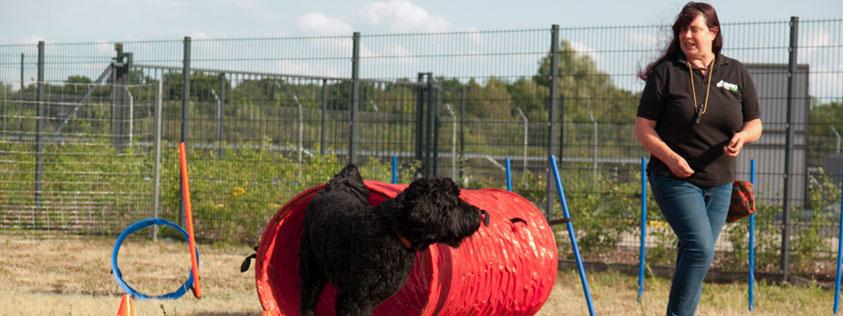 Hundetrainerin aus Nienburg/Weser
